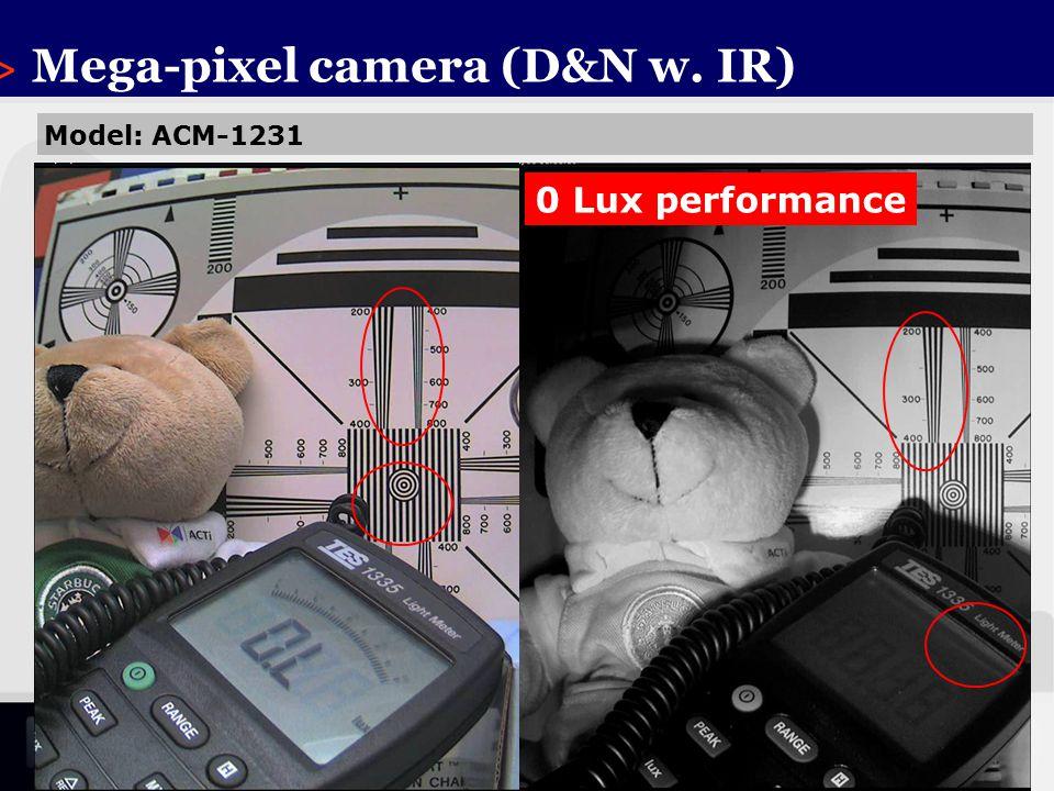 > Mega-pixel camera (D&N w. IR)