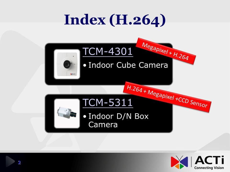 H.264 + Megapixel +CCD Sensor