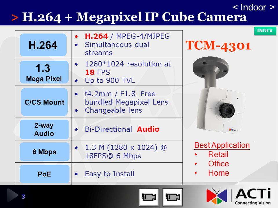 > H.264 + Megapixel IP Cube Camera