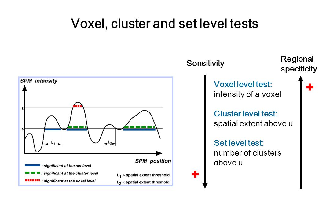 Voxel, cluster and set level tests
