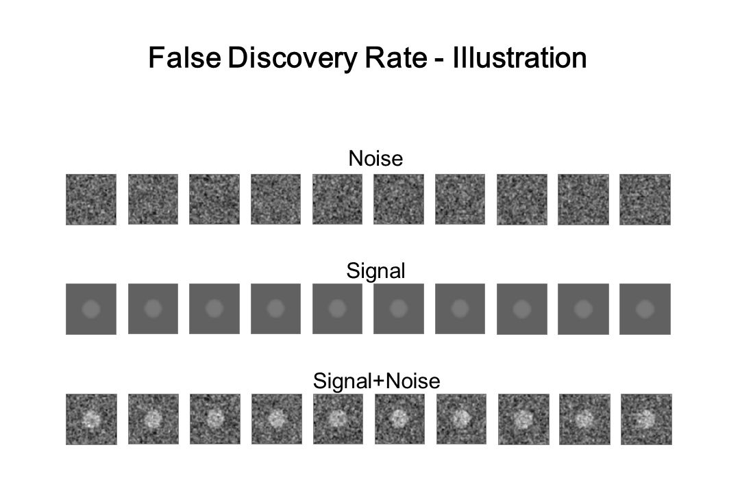 False Discovery Rate - Illustration