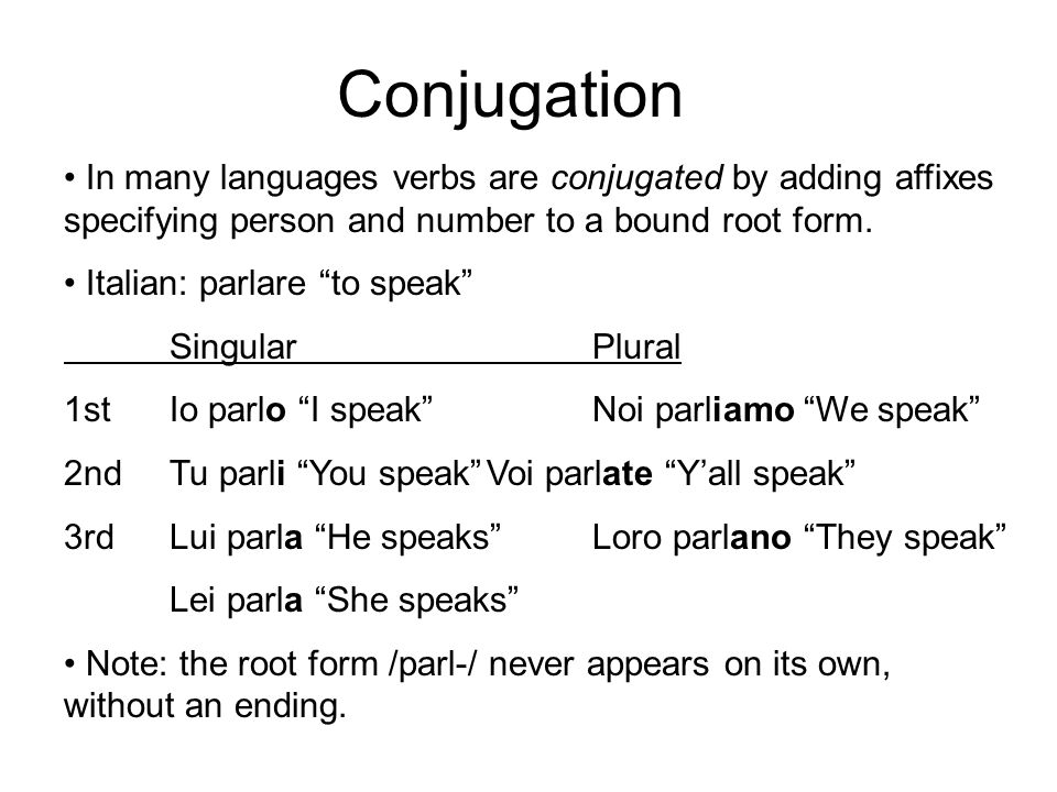Conjugation In many languages verbs are conjugated by adding affixes specifying person and number to a bound root form.