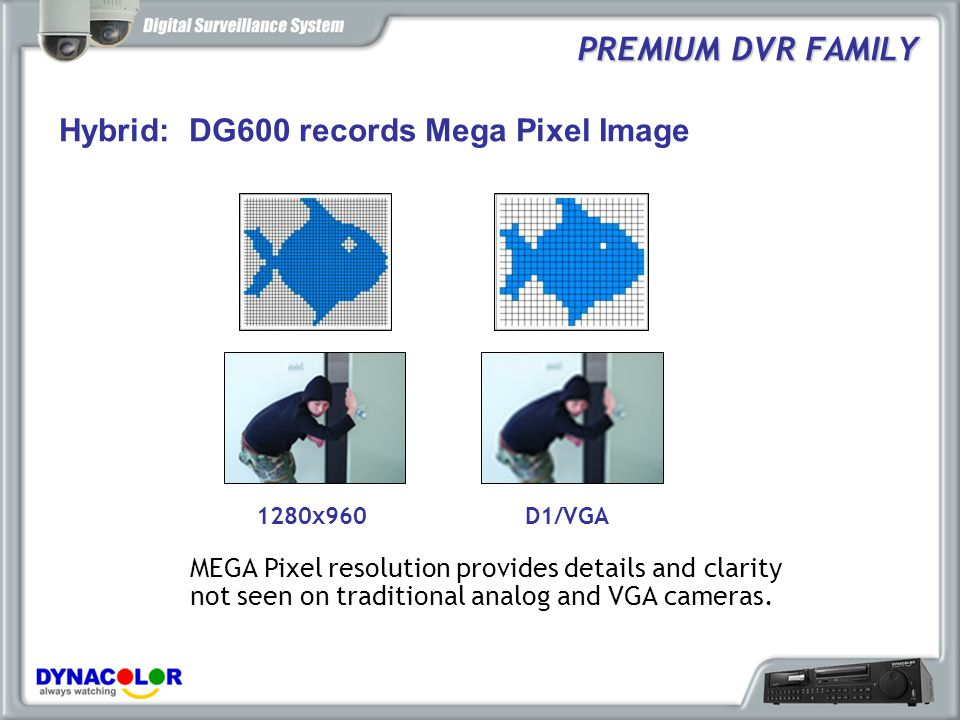 PREMIUM DVR FAMILY Hybrid: DG600 records Mega Pixel Image