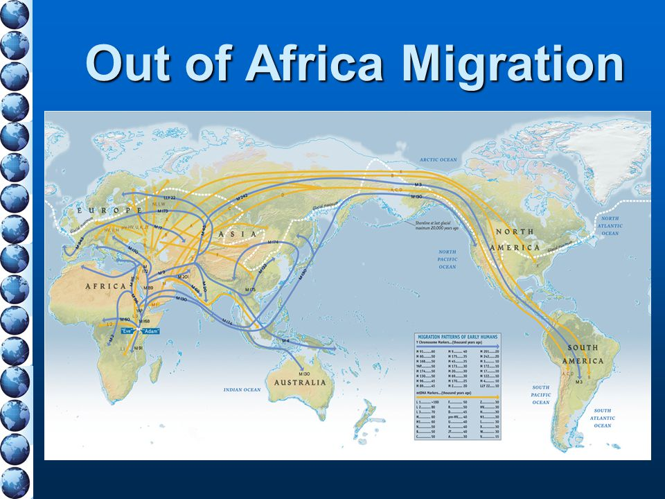 Out of Africa Migration