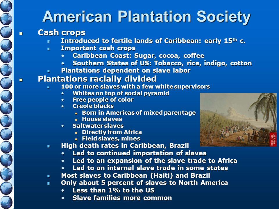 American Plantation Society
