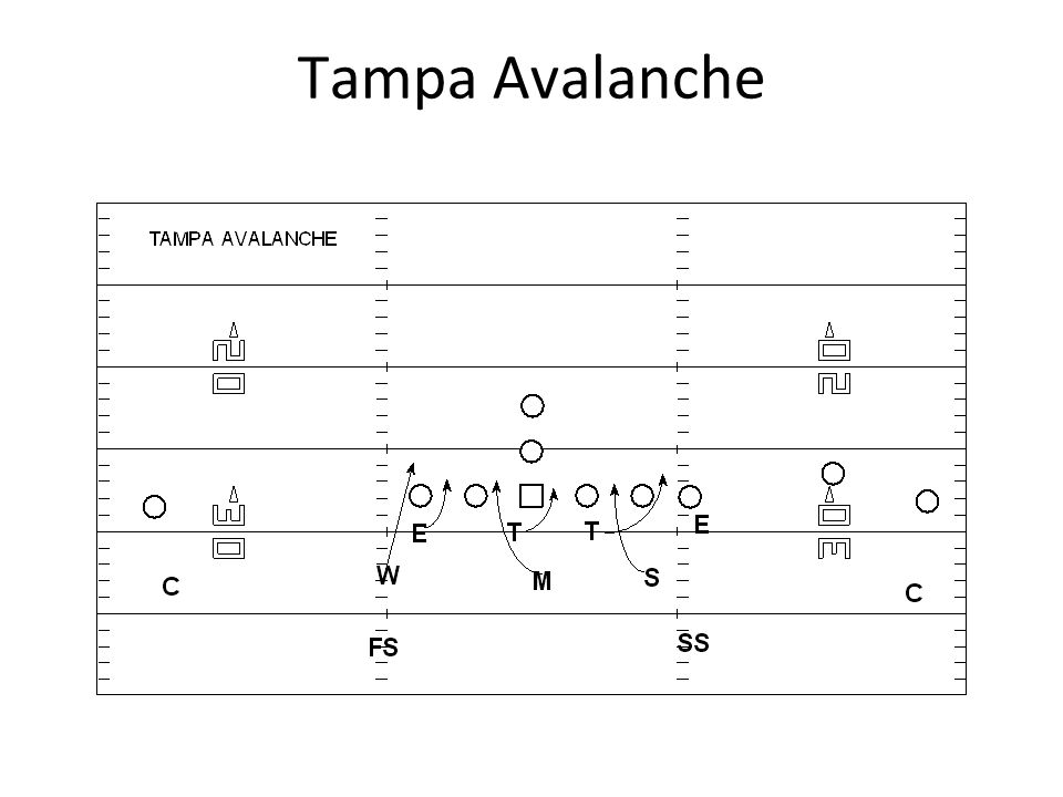 Tampa Avalanche
