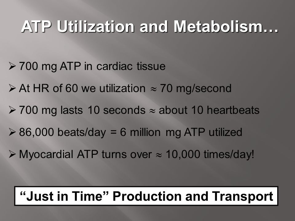 ATP Utilization and Metabolism…