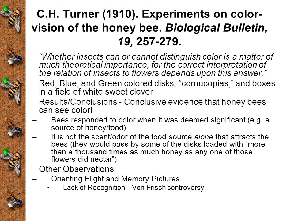 C. H. Turner (1910). Experiments on color-vision of the honey bee