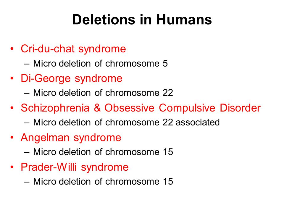 Deletions in Humans Cri-du-chat syndrome Di-George syndrome