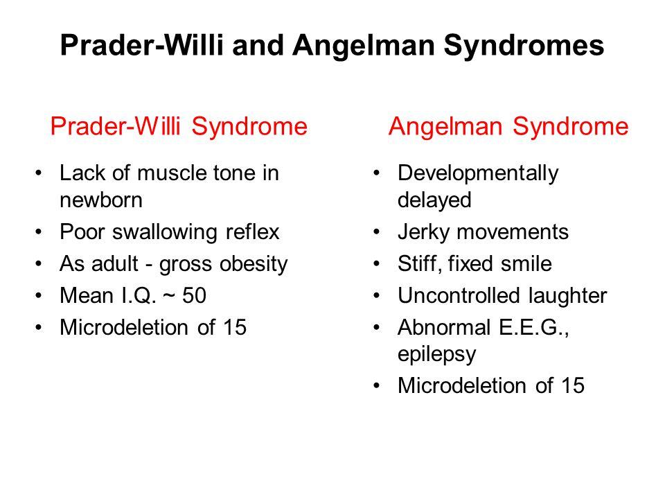 Prader-Willi and Angelman Syndromes