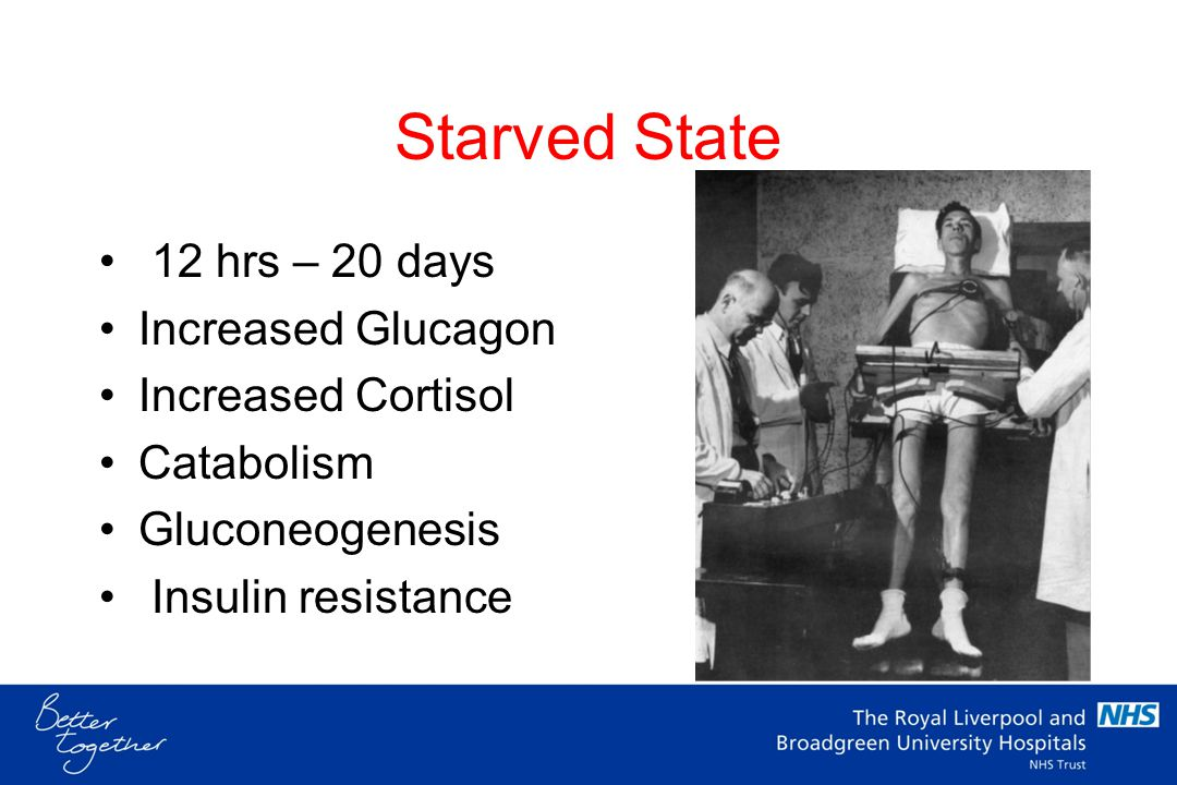Starved State 12 hrs – 20 days Increased Glucagon Increased Cortisol
