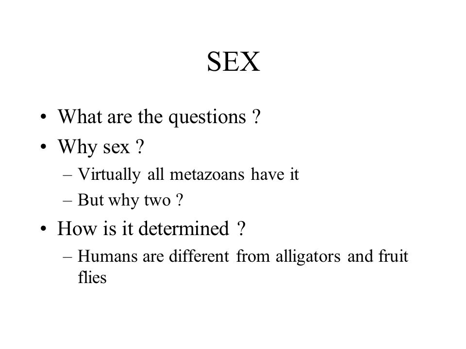 SEX What are the questions Why sex How is it determined