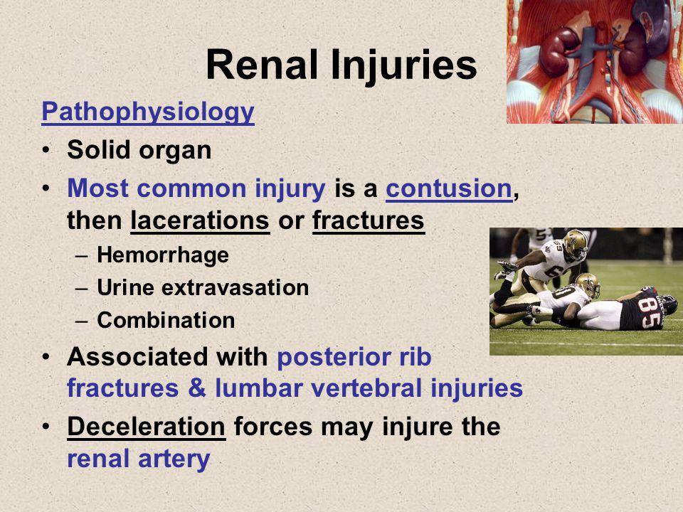 Renal Injuries Pathophysiology Solid organ