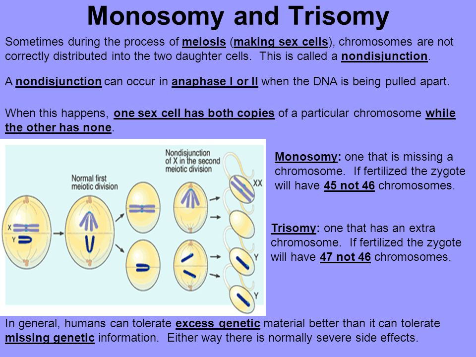 Monosomy and Trisomy