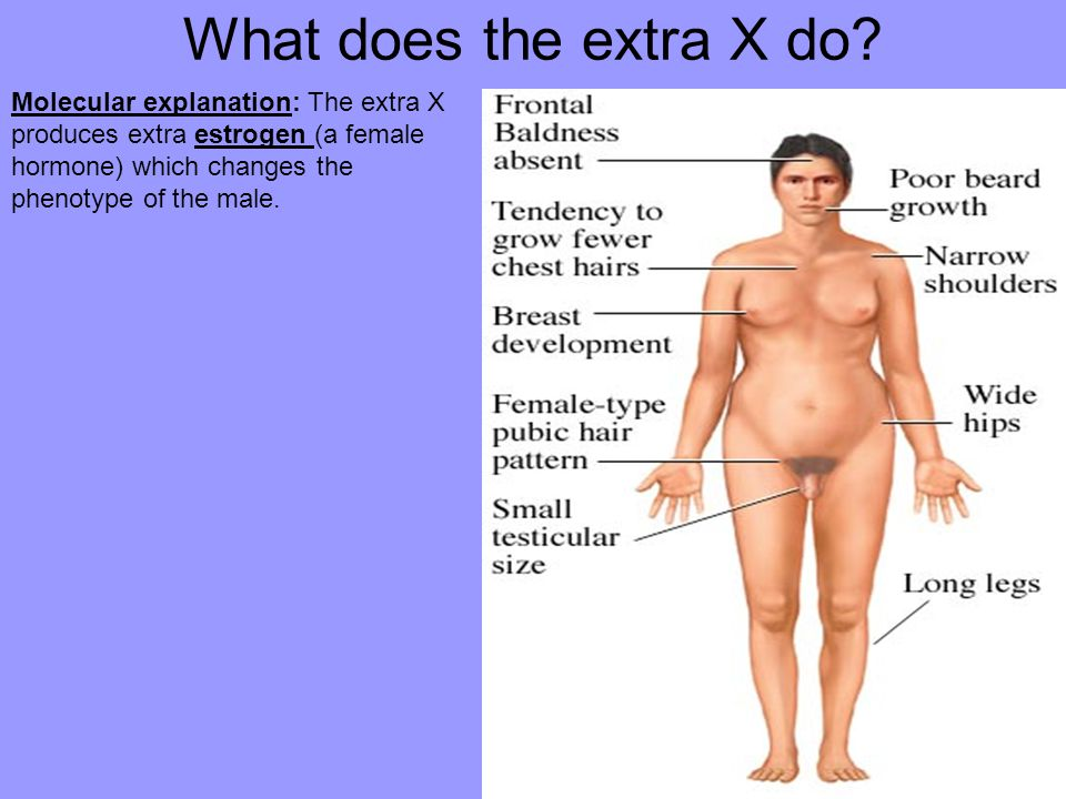 What does the extra X do.
