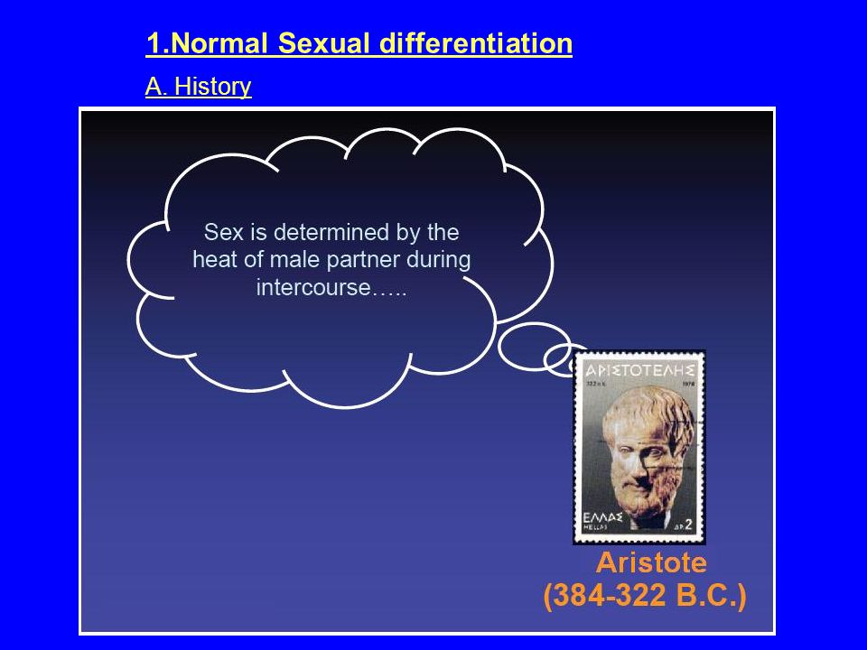 1.Normal Sexual differentiation A. History