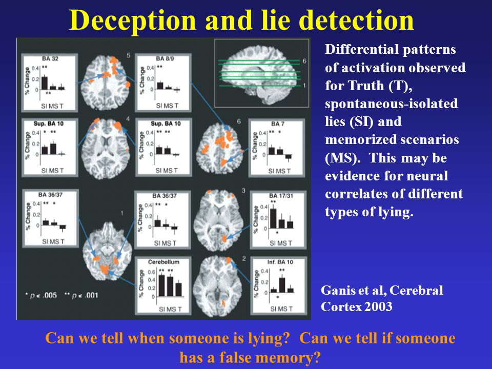 Deception and lie detection