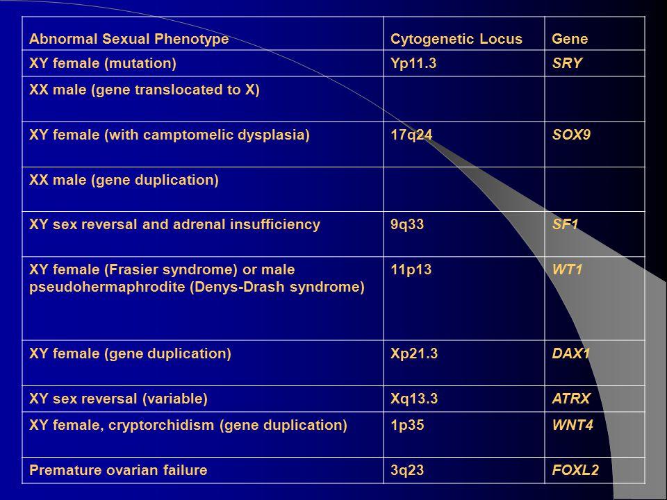 Abnormal Sexual Phenotype
