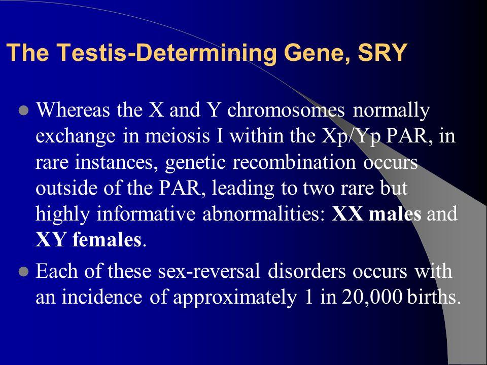 The Testis-Determining Gene, SRY
