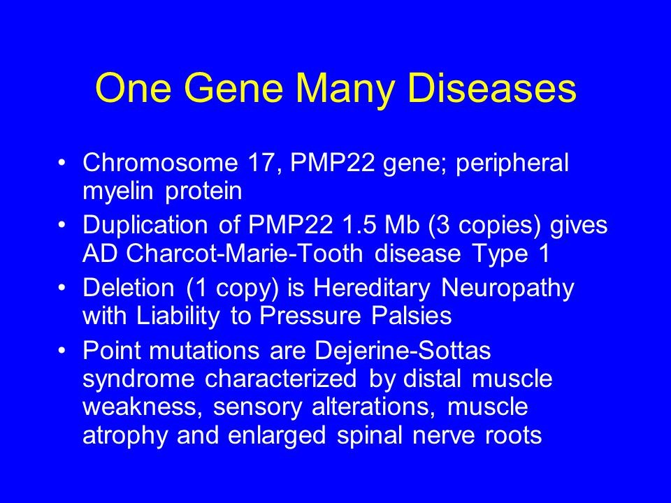One Gene Many Diseases Chromosome 17, PMP22 gene; peripheral myelin protein.