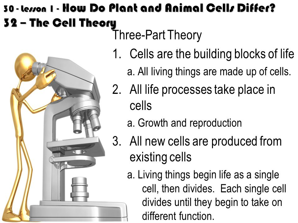 Cells are the building blocks of life