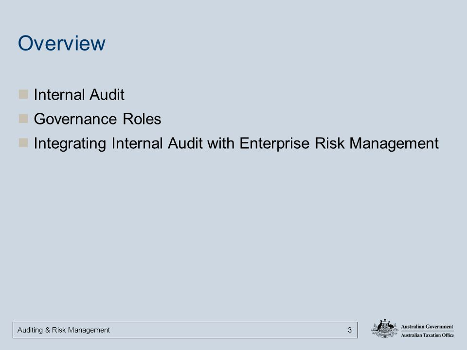 Overview Internal Audit Governance Roles