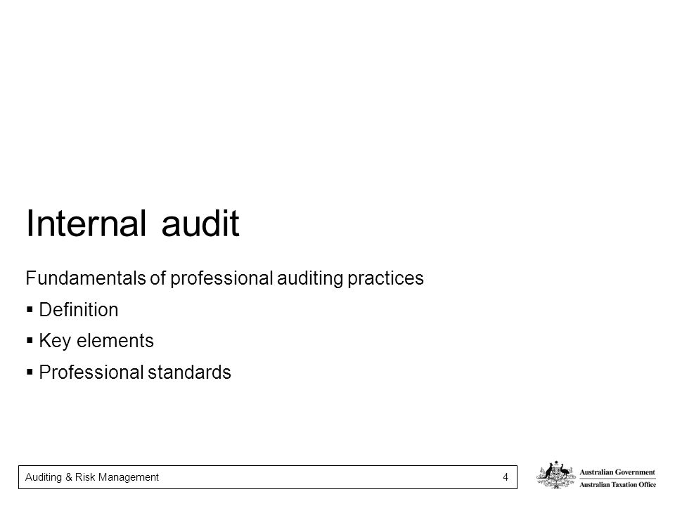 Internal audit Fundamentals of professional auditing practices