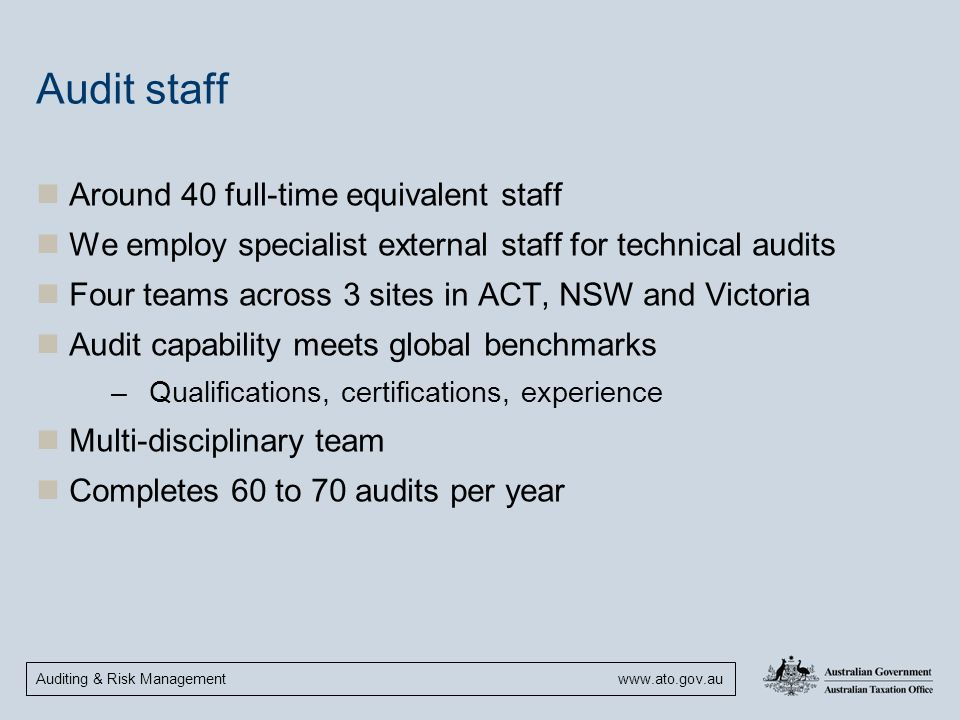 Audit staff Around 40 full-time equivalent staff