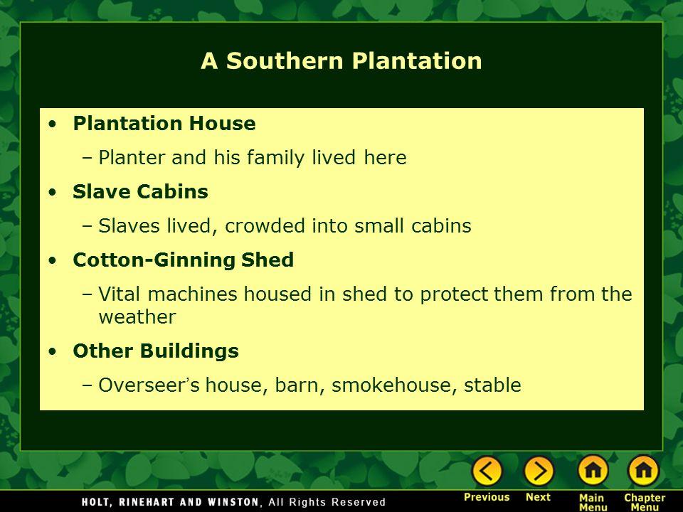 A Southern Plantation Plantation House