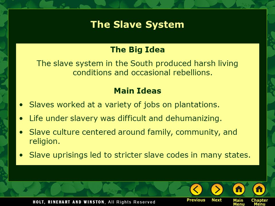 The Slave System The Big Idea