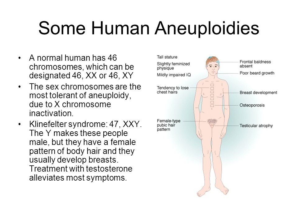 Some Human Aneuploidies