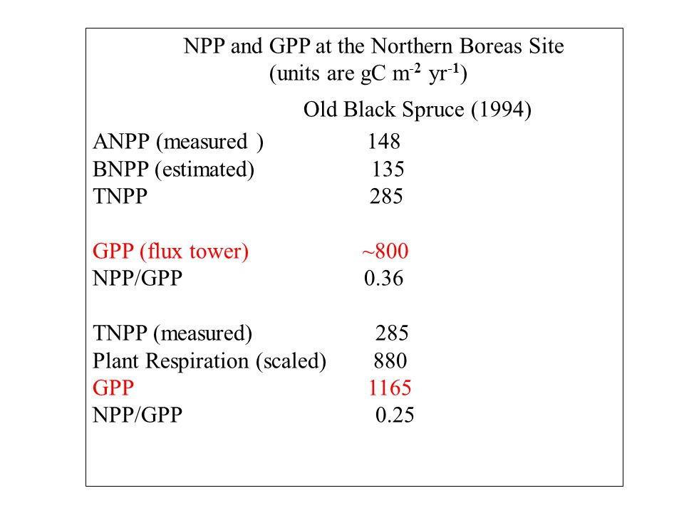 NPP and GPP at the Northern Boreas Site