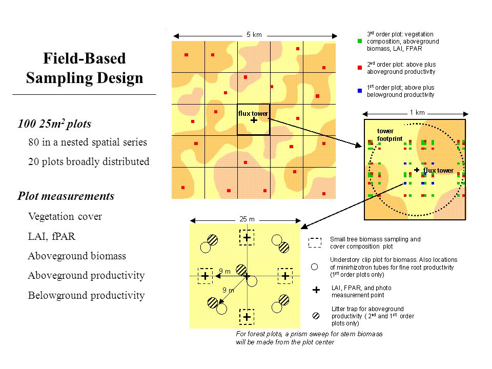 Field-Based Sampling Design