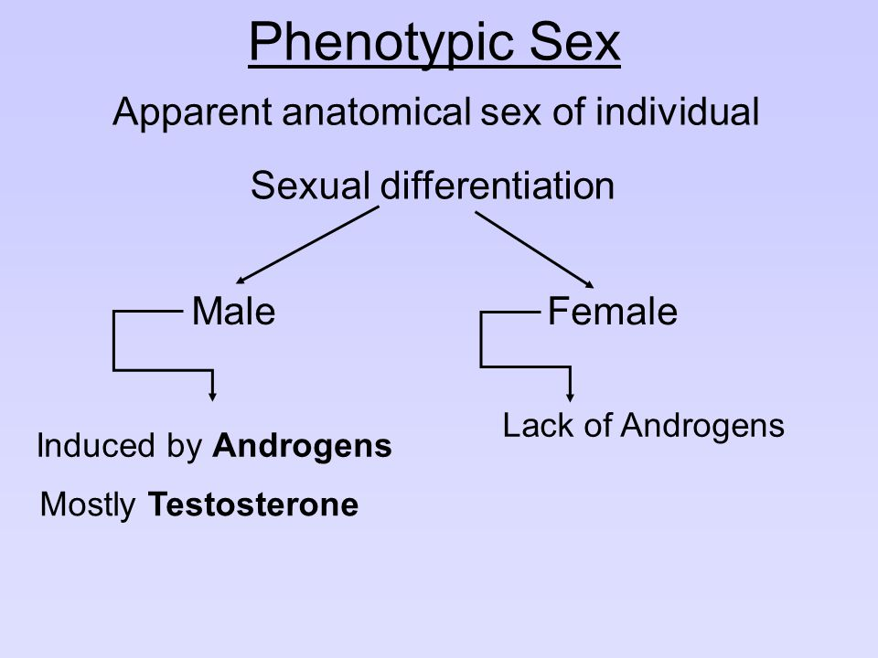 Phenotypic Sex Apparent anatomical sex of individual