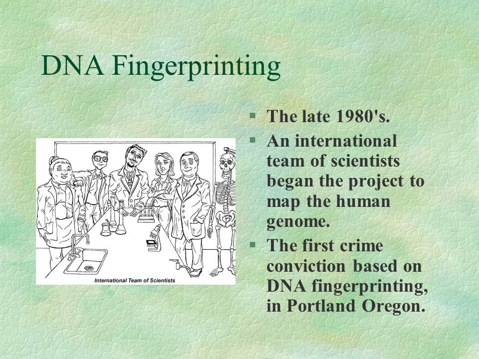 DNA Fingerprinting The late 1980 s.