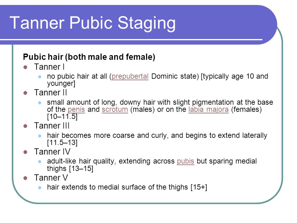 Tanner Pubic Staging Pubic hair (both male and female) Tanner I