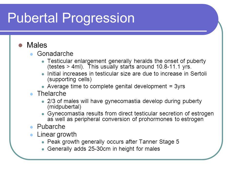 Pubertal Progression Males Gonadarche Thelarche Pubarche Linear growth