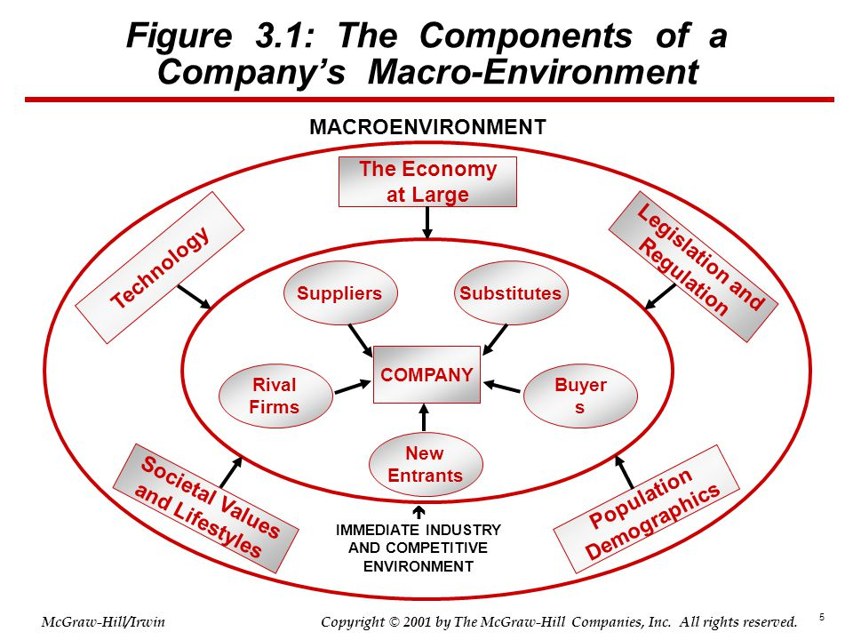 Figure 3.1: The Components of a Company's Macro-Environment