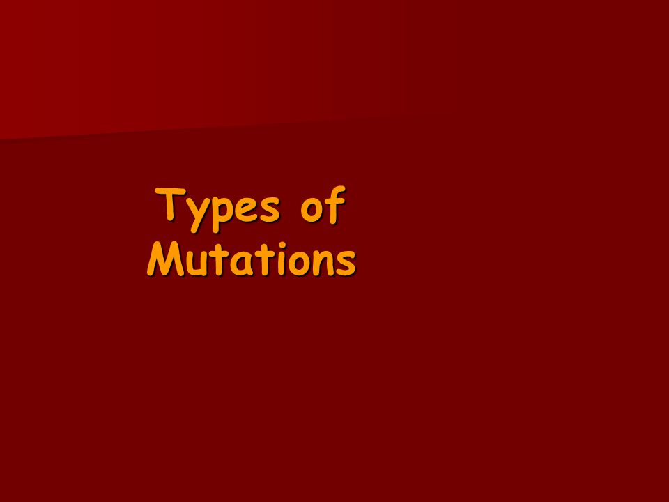 Types of Mutations 5