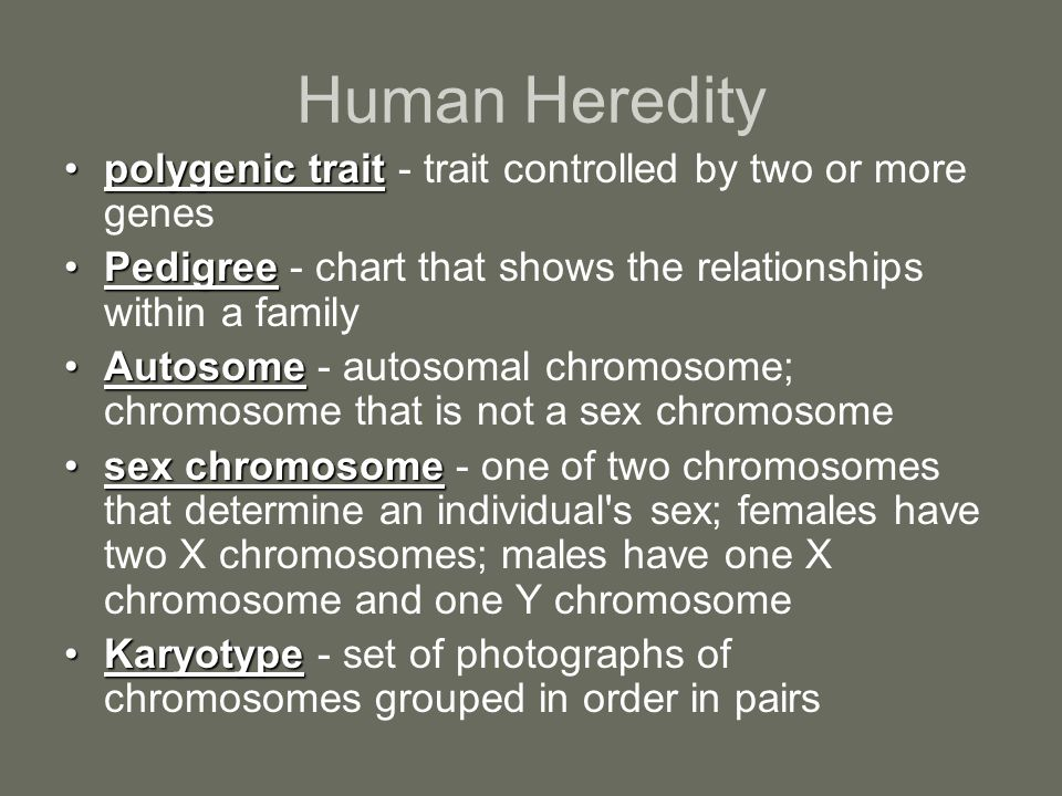 Human Heredity polygenic trait - trait controlled by two or more genes