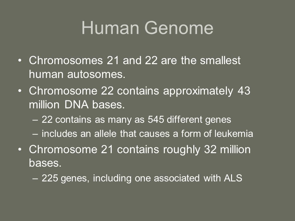 Human Genome Chromosomes 21 and 22 are the smallest human autosomes.