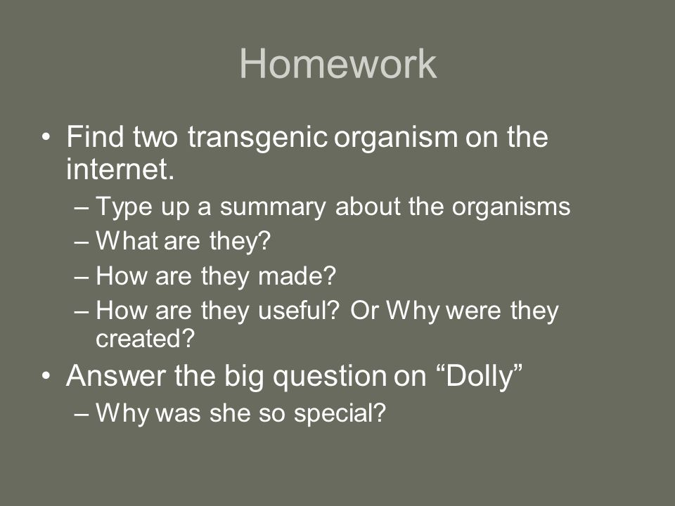 Homework Find two transgenic organism on the internet.