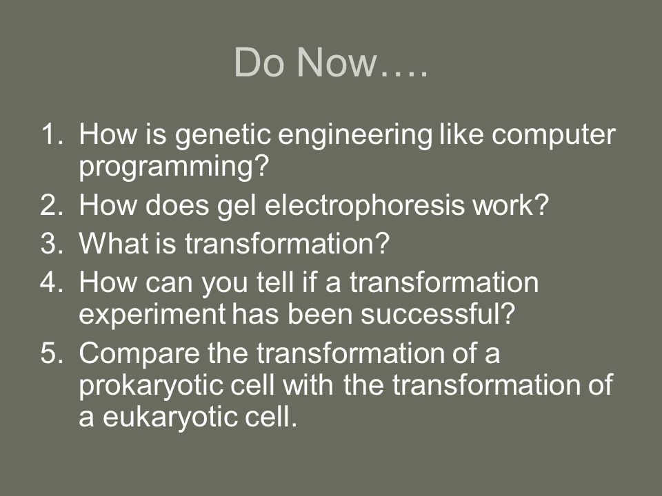Do Now…. How is genetic engineering like computer programming