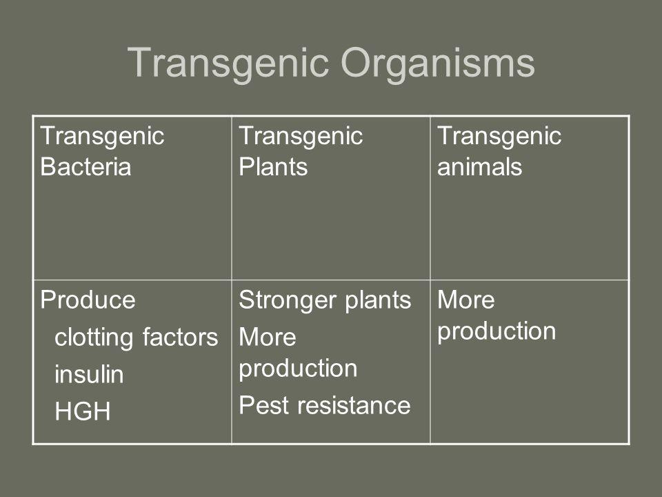 Transgenic Organisms Transgenic Bacteria Transgenic Plants