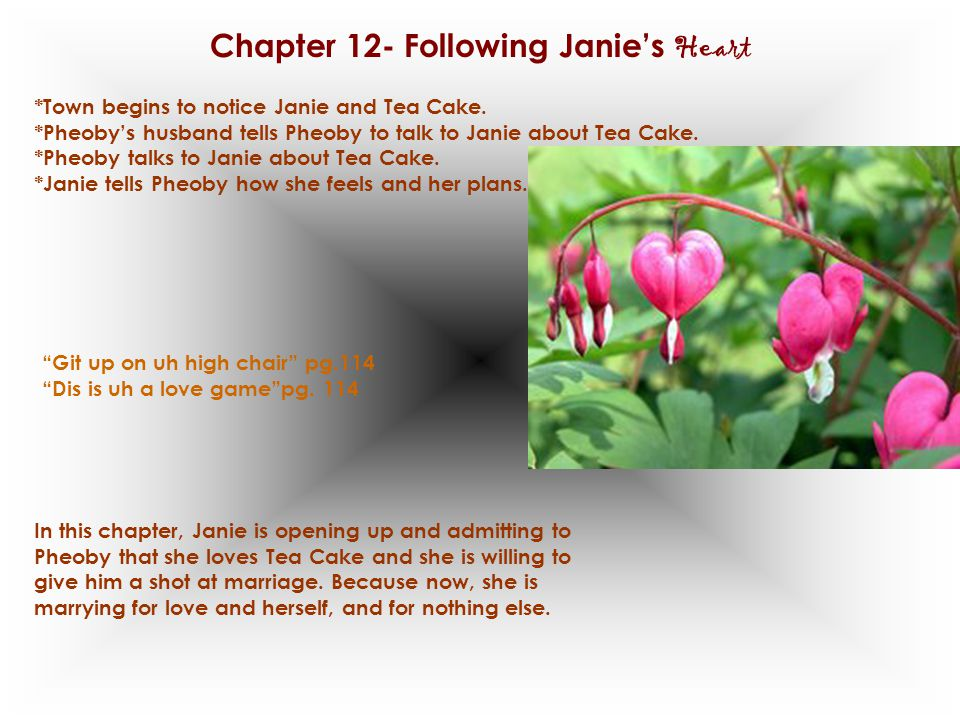 Chapter 12- Following Janie's Heart