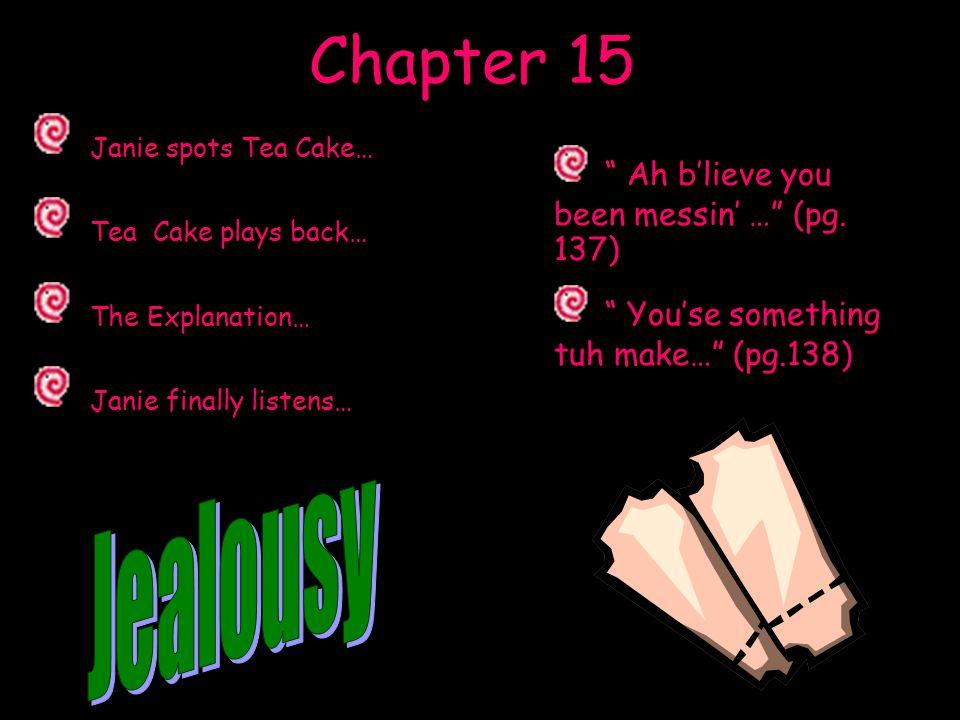 Chapter 15 Janie spots Tea Cake… Tea Cake plays back… The Explanation…