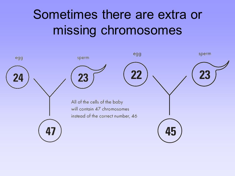 Sometimes there are extra or missing chromosomes