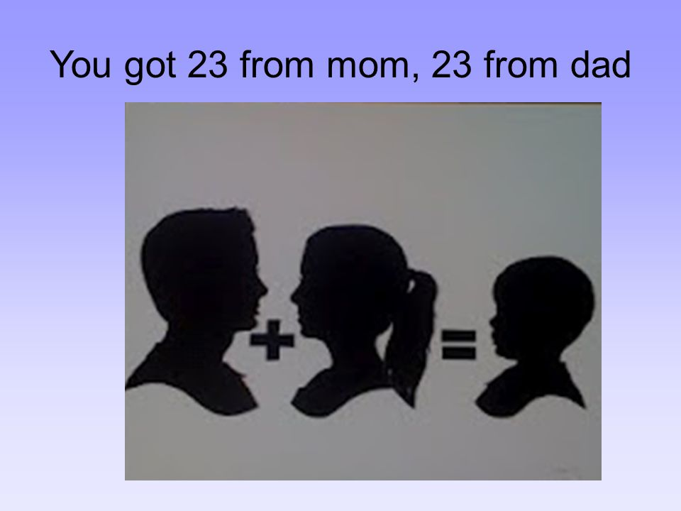 You got 23 from mom, 23 from dad