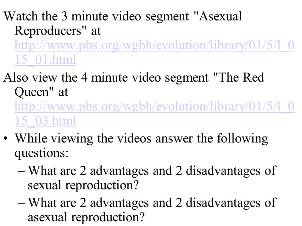 Watch the 3 minute video segment Asexual Reproducers at http://www