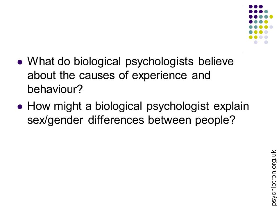What do biological psychologists believe about the causes of experience and behaviour